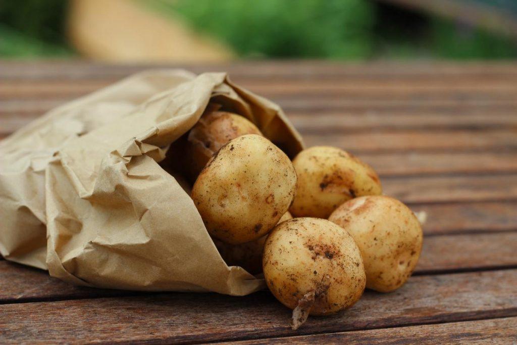 Vsestransko zdravilen krompirjev sok 2