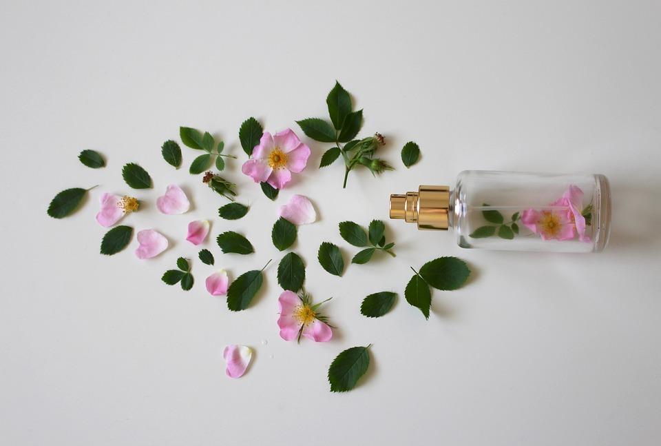 Priprava in uporaba rožne vodice 1