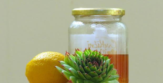 Netresk, limona in med - naravno zdravljenje hemoroidov